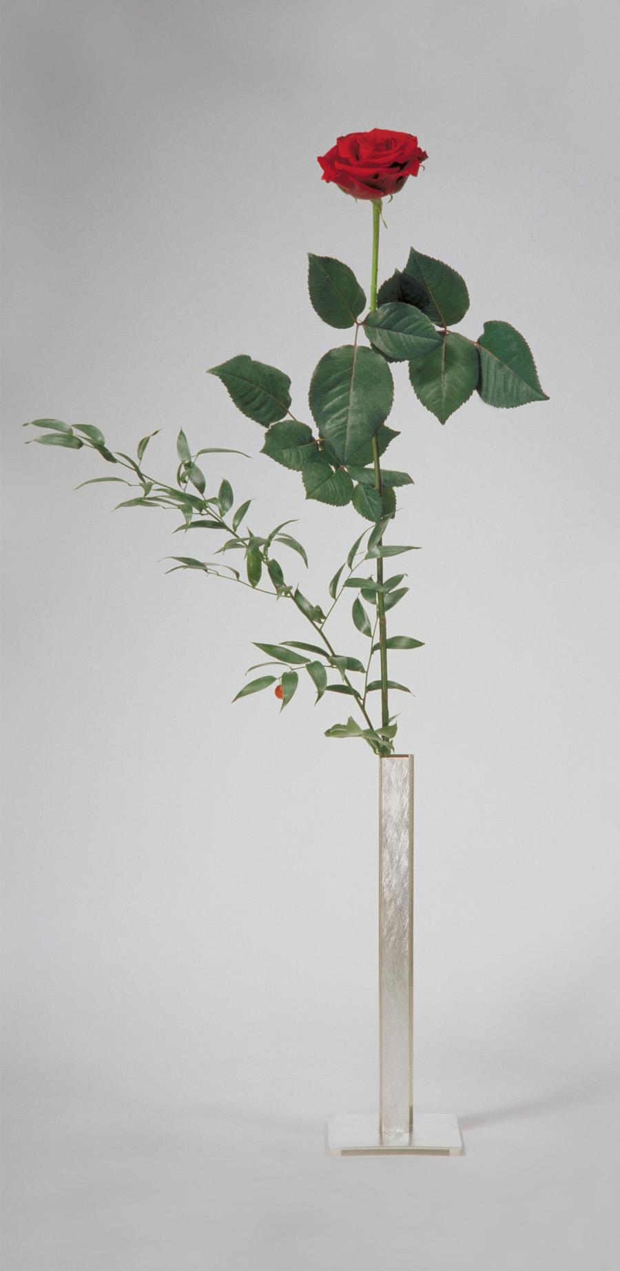 flower vase  2005  silver 925  120x120x350  mm